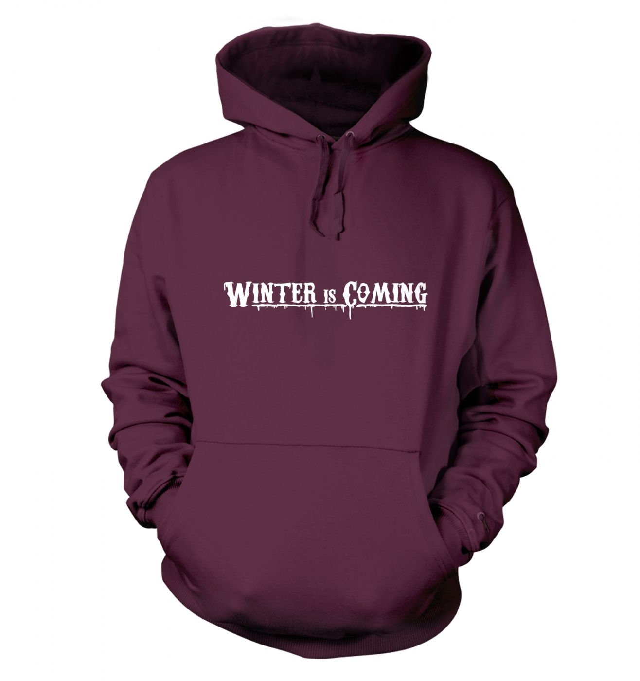 Winter Is Coming hoodie