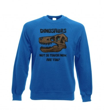 Dinosaurs Not So Tough sweatshirt