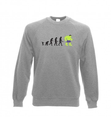 Hulk Evolution sweatshirt