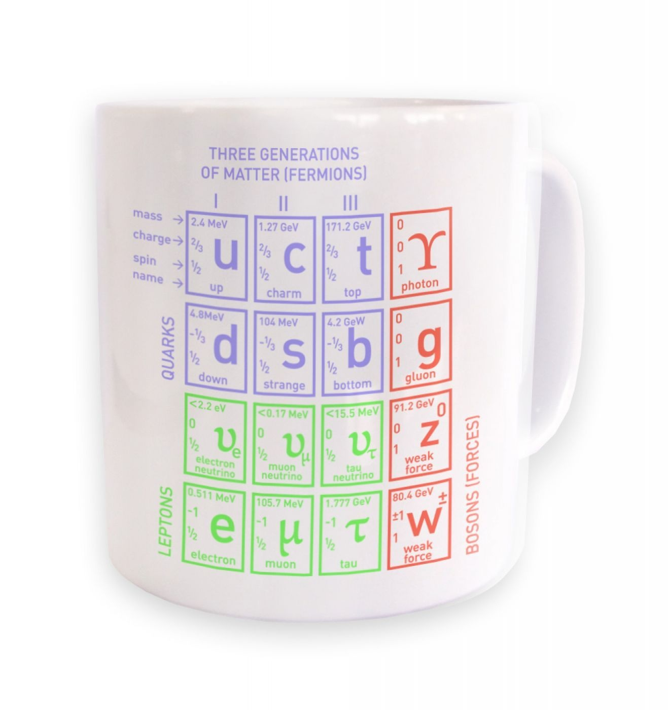 Standard Model of Particle Physics mug
