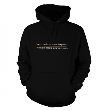 Power Of Stupid People hoodie
