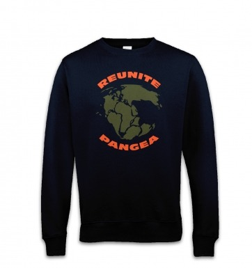 Reunite Pangea sweatshirt