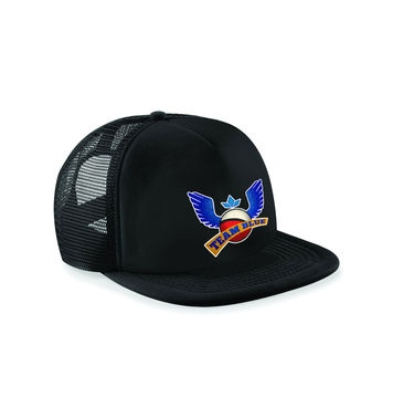 Team Blue baseball cap