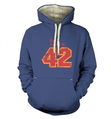 The Answer Is 42 premium hoodie