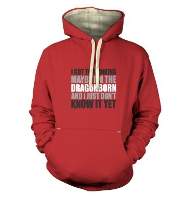 Thinking I'm The Dragonborn premium hoodie 
