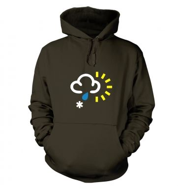 Weather Symbol Snow with Rain and Sun hoodie