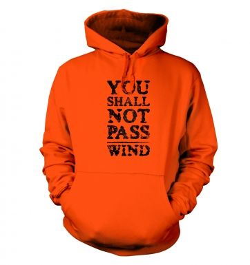 you shall not pass wind  hoodie