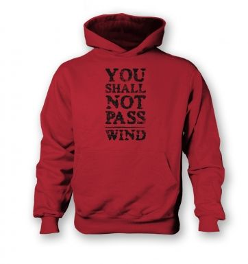 you shall not pass wind  kids hoodie
