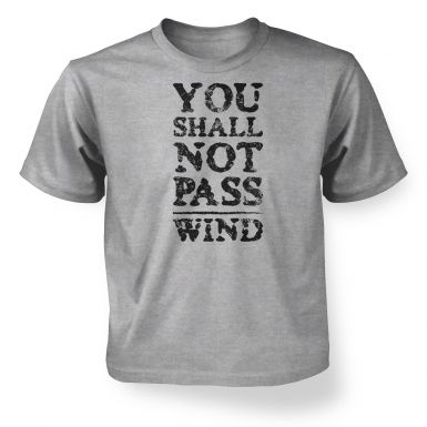 you shall not pass wind  kids t-shirt