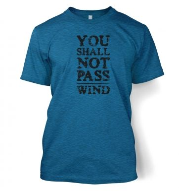 you shall not pass wind  t-shirt
