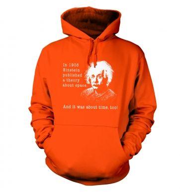 Einstein Had A Theory hoodie
