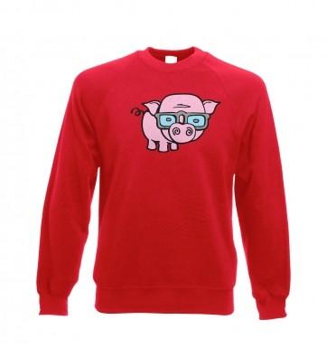Geek Pig sweatshirt