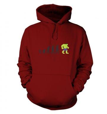 Hulk Evolution hoodie