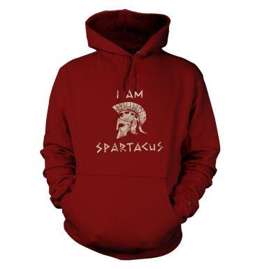I Am Spartacus hoodie