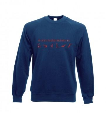 If lost please return to Earth sweatshirt