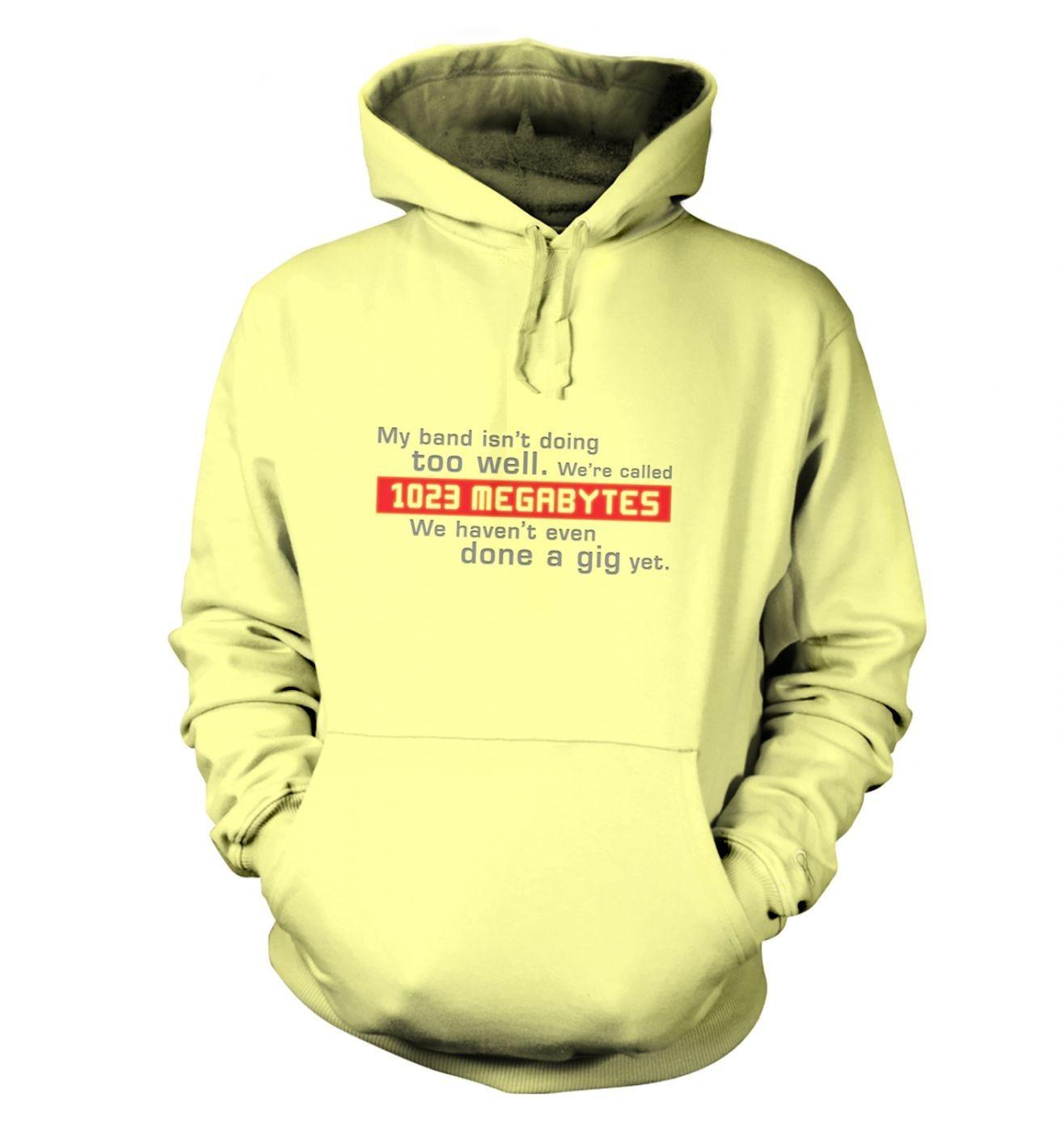 1023 Megabytes hoodie