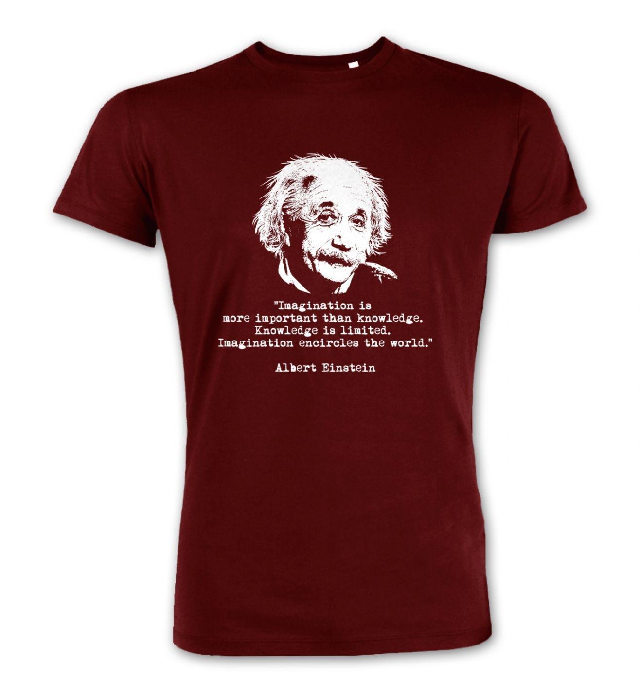 Imagination Quote Einstein premium t-shirt