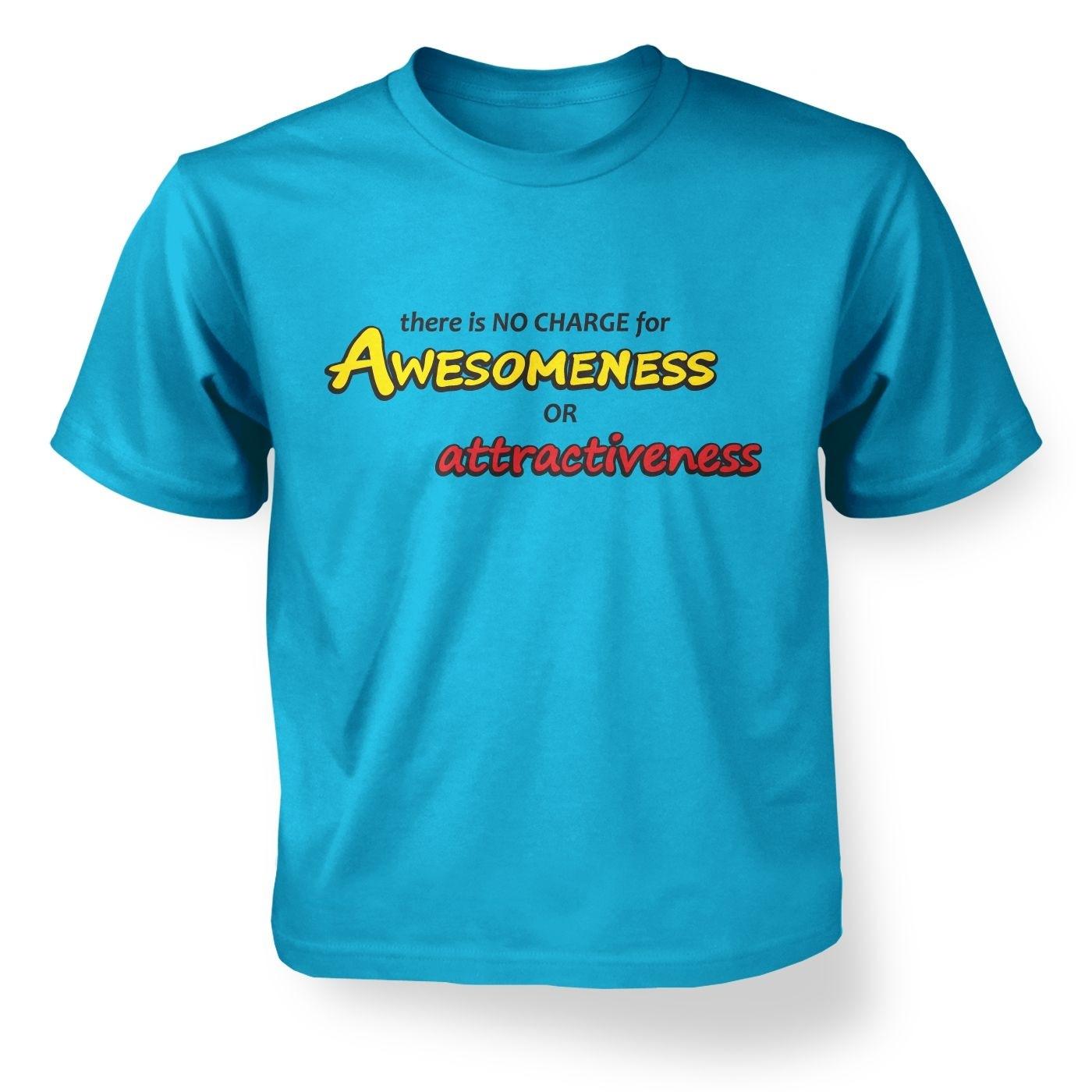 Kids' Awesomeness t-shirt - Inspired by Kung Fu Panda