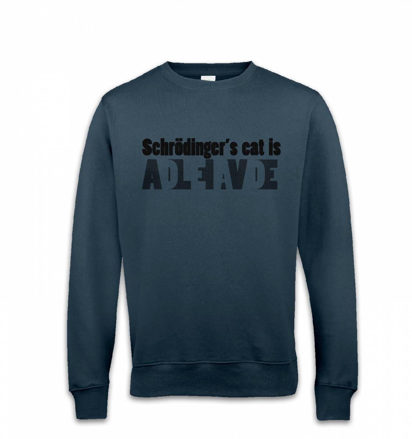 Schrodingers Cat Is Dead And Alive sweatshirt