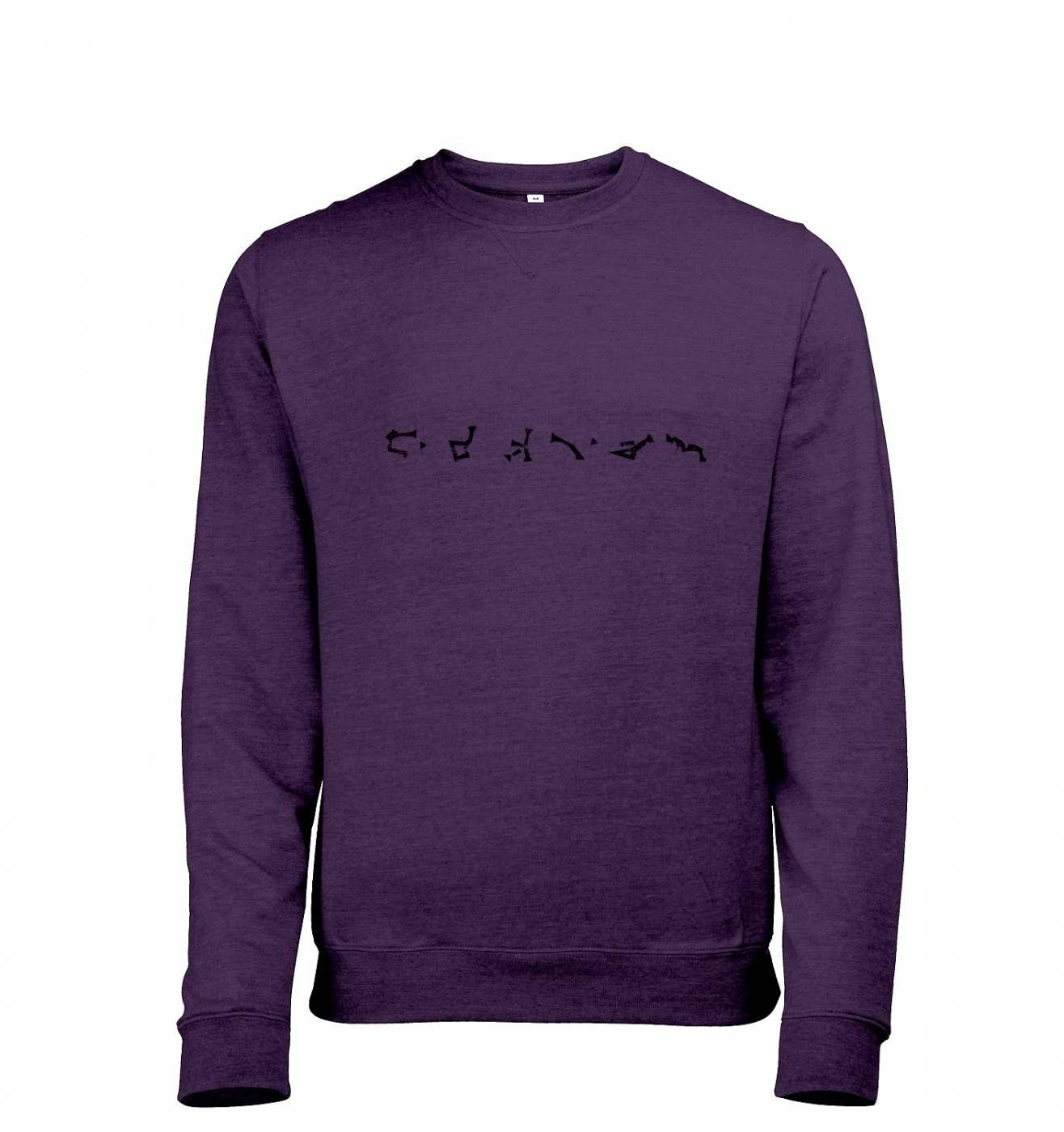 Stargate Earth Address heather sweatshirt