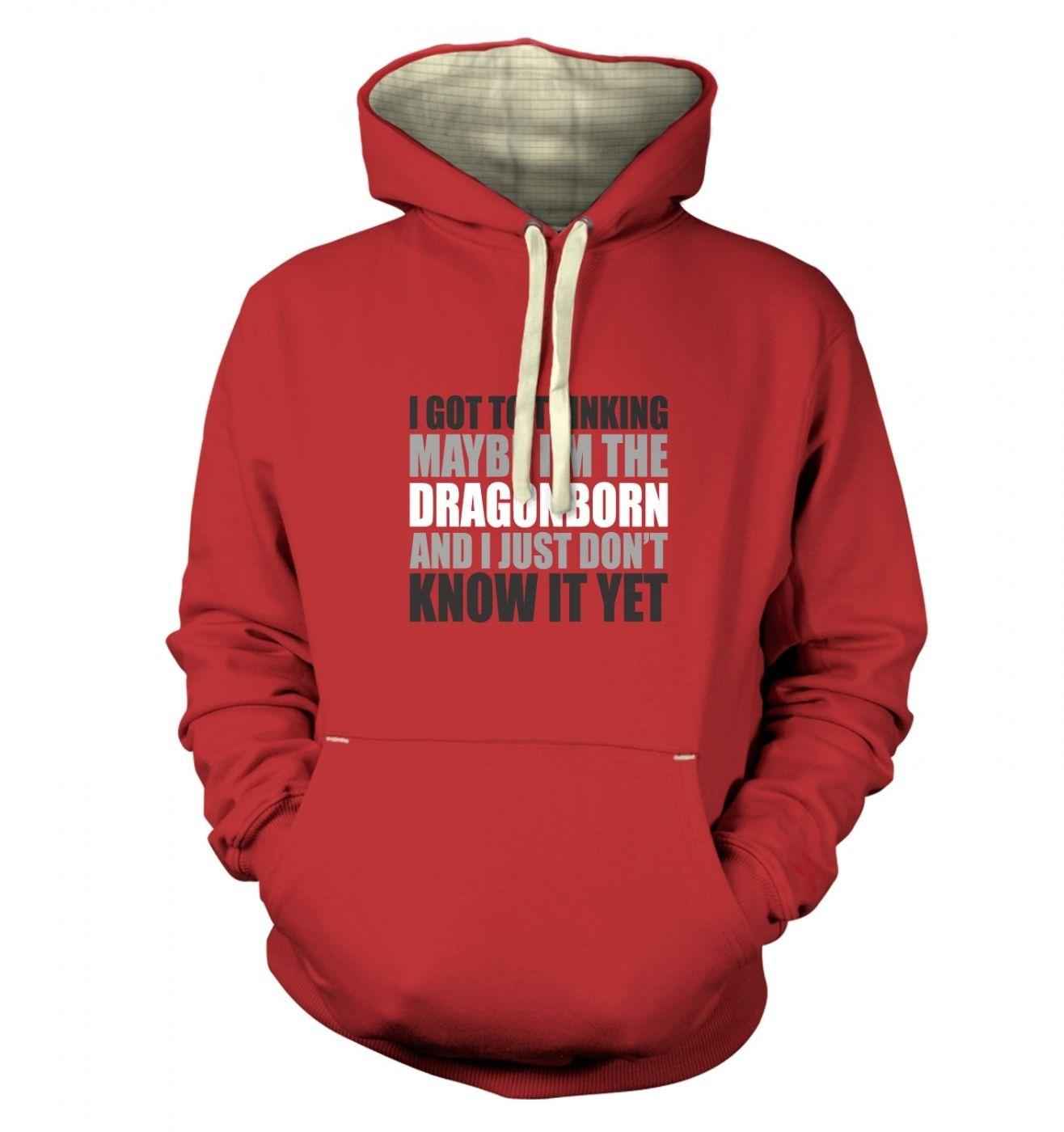Thinking I'm The Dragonborn premium hoodie