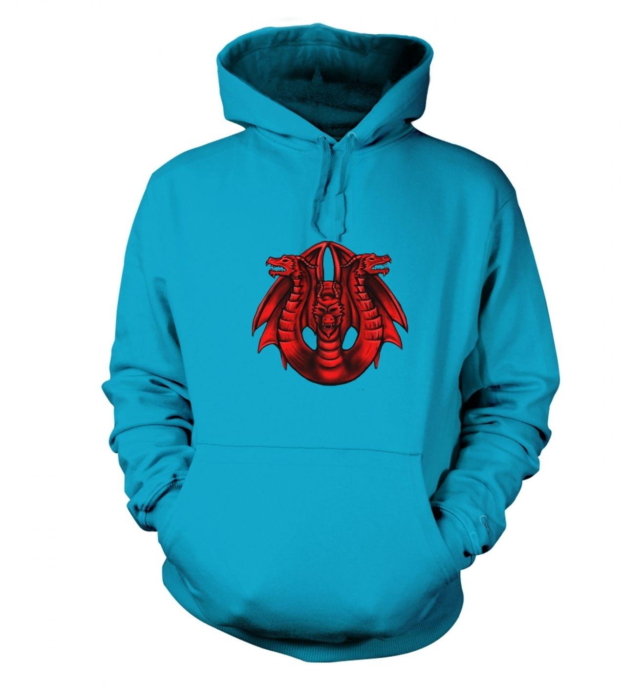 Three Headed Dragon hoodie