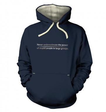 Power Of Stupid People hoodie (premium)