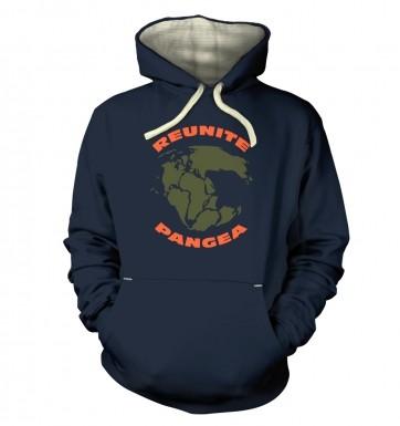 Reunite Pangea hoodie (premium)